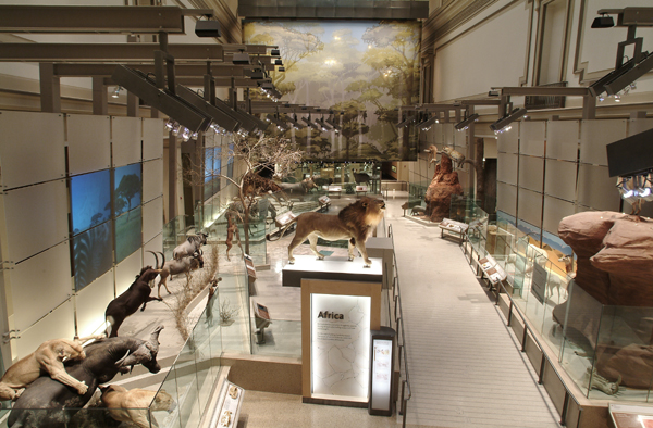NMNH's Mammal Hall