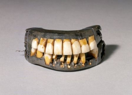 An original set of Washington's teeth, made of ivory, human teeth, and animal teeth.