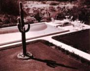 Benton Garden in Phoenix, Arizona, circa 1950. Archives of American Gardens