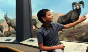 Staff makes sure kids feel right at home at the Denver Museum of Nature and Science