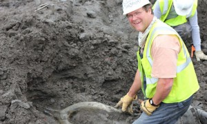 National Museum of Natural History director Kirk Johnson, digging for mastodon bones in Colorado.