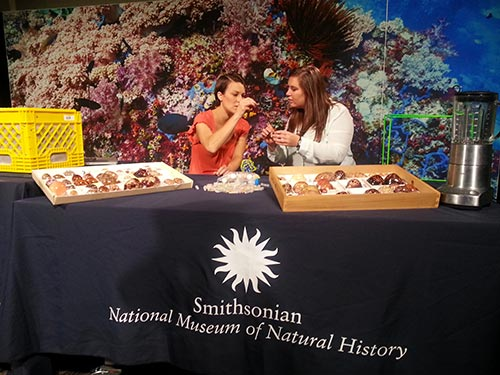 Two women sit behind a table with natural science material on top