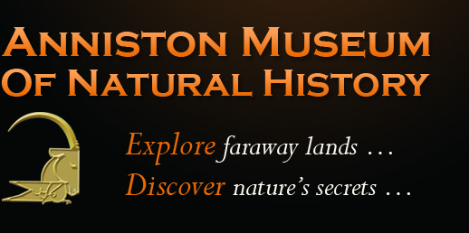 Anniston Museum of Natural History logo