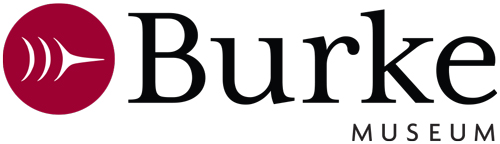 Burke Museum of Natural History and Culture logo