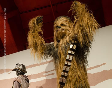 Rebel, Jedi, Princess, Queen: Star Wars™ and the Power of Costume exhibition image