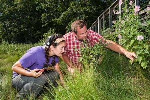 Two scientists crouch in tall grass studying plants growing on a wooden fence.